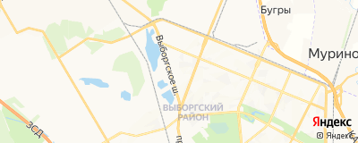 Суринт Наталья Александровна, адрес работы: г Санкт-Петербург, ул Асафьева, д 1