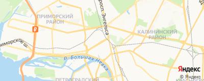 Казакова Наталья Владимировна, адрес работы: г Санкт-Петербург, ул Сердобольская, д 7 к 2