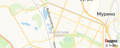 Осипова Елена Николаевна, адрес работы: г Санкт-Петербург, пр-кт Луначарского, д 52 к 1