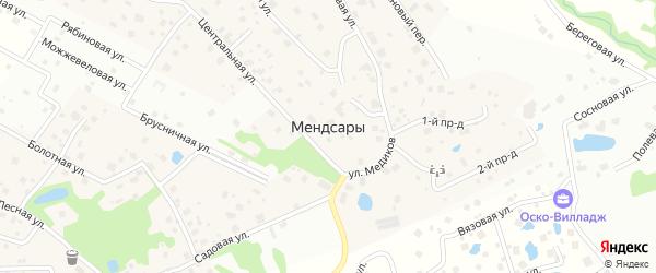 Переулок Медиков на карте деревни Мендсар Ленинградской области с номерами домов
