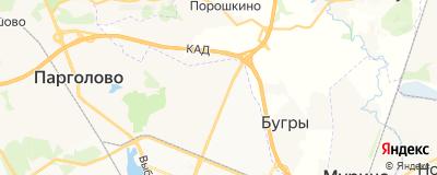 Дудин Максим Владимирович, адрес работы: г Санкт-Петербург, ул Заречная, д 45 к 1
