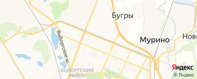 Жижкин Алексей Сергеевич, адрес работы: г Санкт-Петербург, аллея Придорожная, д 15 литер а
