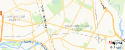 Гулян Ани Зориковна, адрес работы: г Санкт-Петербург, ул Политехническая, д 20