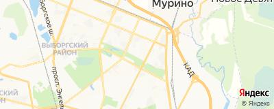 Бейнусов Дмитрий Сергеевич, адрес работы: г Санкт-Петербург, ул Ушинского, д 2 к 1