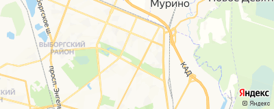 Воронов Виктор Алексеевич, адрес работы: г Санкт-Петербург, ул Ушинского, д 5 к 1 литер б