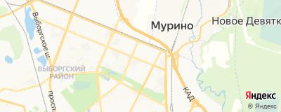 Махмудов Руслан Рамазанович, адрес работы: г Санкт-Петербург, ул Брянцева, д 13 к 1