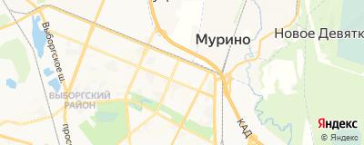 Шумай Денис Васильевич, адрес работы: г Санкт-Петербург, ул Тимуровская, д 17 к 3