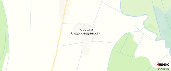 Карта Горушки Сидоровщинской деревни в Псковской области с улицами и номерами домов