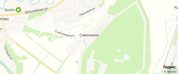 Карта деревни Савочкино в Ленинградской области с улицами и номерами домов