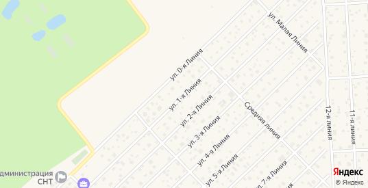 Сдт Павловское-2 1-я линия в Павловске с номерами домов на карте. Спутник и схема онлайн