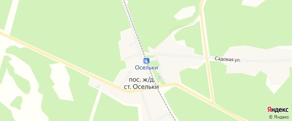 Карта станции Осельки в Ленинградской области с улицами и номерами домов
