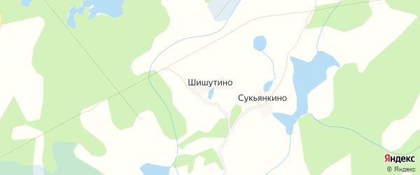 Карта деревни Шишутино в Псковской области с улицами и номерами домов