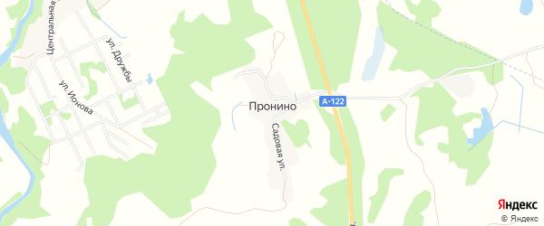 Карта деревни Пронино в Псковской области с улицами и номерами домов