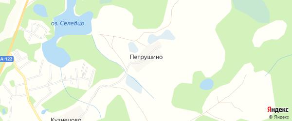 Карта деревни Петрушино в Псковской области с улицами и номерами домов