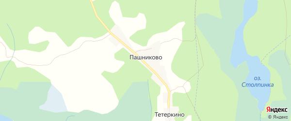 Карта деревни Пашниково в Псковской области с улицами и номерами домов