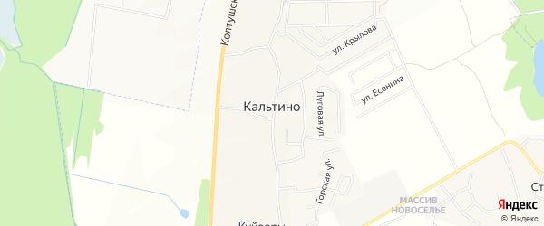Карта деревни Кальтино в Ленинградской области с улицами и номерами домов