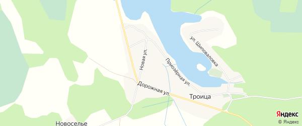 Карта деревни Троицы в Псковской области с улицами и номерами домов