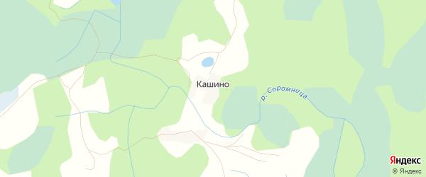 Карта деревни Кашино в Псковской области с улицами и номерами домов