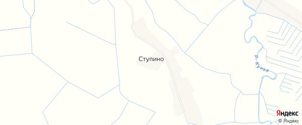 Карта деревни Ступино в Псковской области с улицами и номерами домов