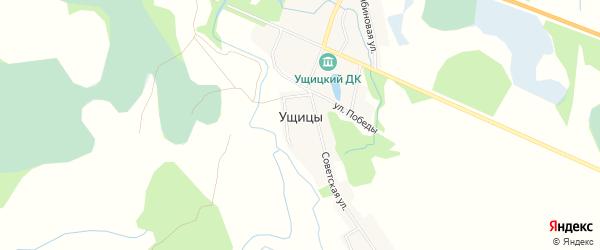 Карта деревни Ущицы в Псковской области с улицами и номерами домов