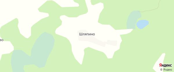 Карта деревни Шляпино в Псковской области с улицами и номерами домов