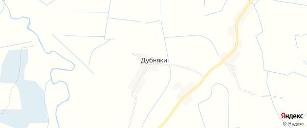 Карта деревни Дубняков в Псковской области с улицами и номерами домов