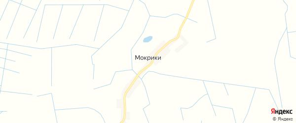 Карта деревни Мокриков в Псковской области с улицами и номерами домов
