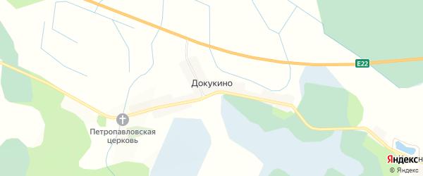 Карта деревни Докукино в Псковской области с улицами и номерами домов