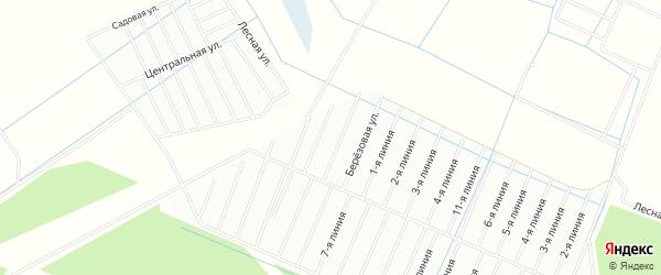 Карта садового некоммерческого товарищества Приморского массива Пробы в Ленинградской области с улицами и номерами домов