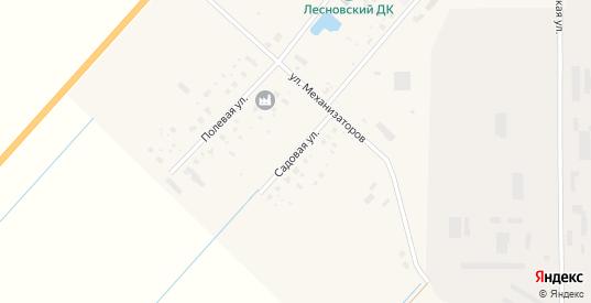 Садовая улица в деревне Лесная в Новгородской области с номерами домов на карте. Спутник и схема онлайн