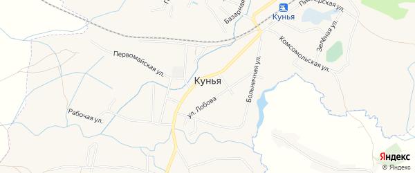 Карта поселка Куньи в Псковской области с улицами и номерами домов