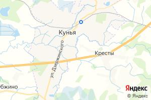 Карта пос. Кунья Псковская область