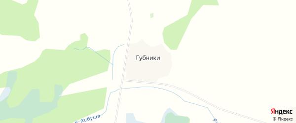 Карта деревни Губники в Смоленской области с улицами и номерами домов