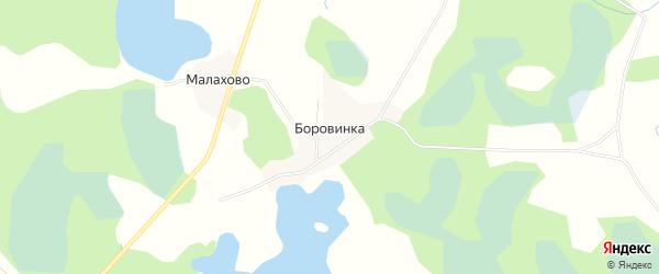 Карта деревни Боровинки в Псковской области с улицами и номерами домов