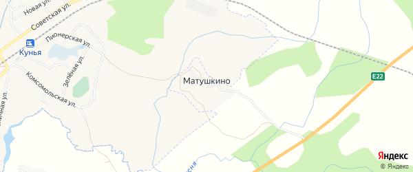 Карта деревни Матушкина в Псковской области с улицами и номерами домов