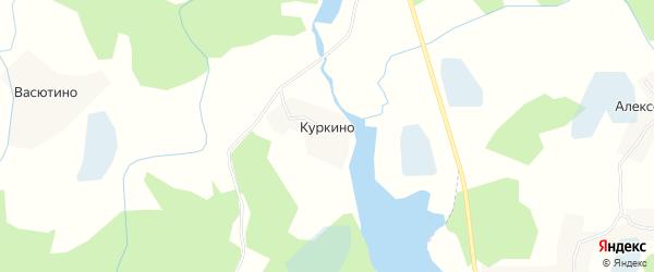 Карта деревни Куркино в Псковской области с улицами и номерами домов