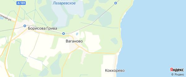 Карта массива Ваганово Ленинградской области с районами, улицами и номерами домов