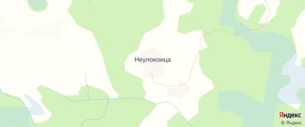 Карта деревни Неупокоицы в Псковской области с улицами и номерами домов