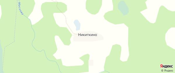 Карта деревни Никиткино в Псковской области с улицами и номерами домов