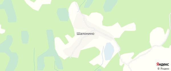 Карта деревни Шалонино в Псковской области с улицами и номерами домов