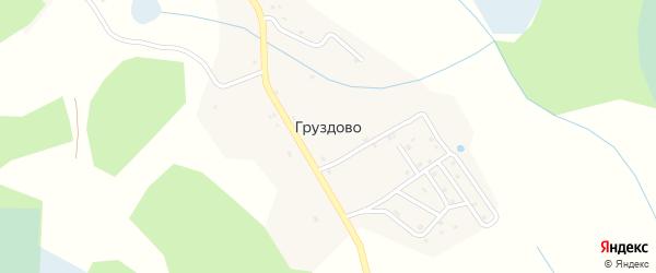 Парковая улица на карте деревни Груздово Псковской области с номерами домов