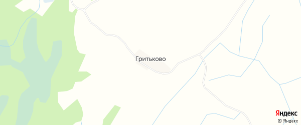 Карта деревни Гритьково в Псковской области с улицами и номерами домов