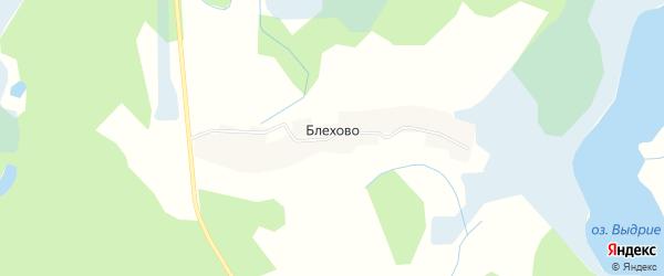 Карта деревни Блехово в Псковской области с улицами и номерами домов