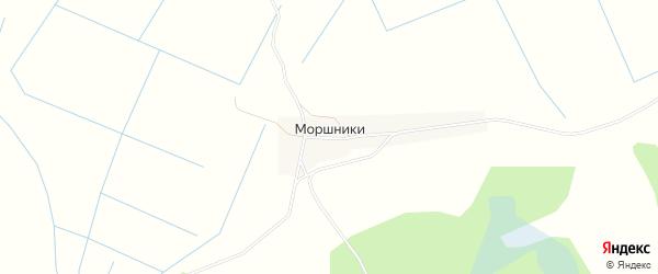 Карта деревни Моршники в Псковской области с улицами и номерами домов