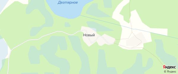Карта деревни Нового Поселка в Псковской области с улицами и номерами домов