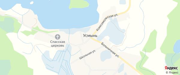 Карта села Усмынь в Псковской области с улицами и номерами домов