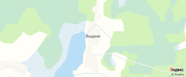 Карта деревни Выдрие в Псковской области с улицами и номерами домов