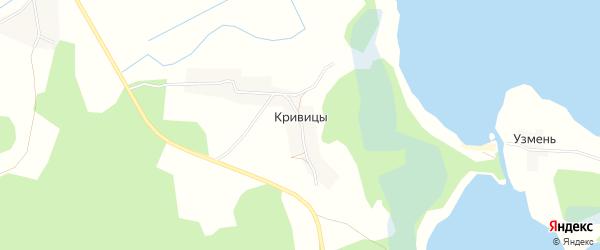 Карта деревни Кривицы в Псковской области с улицами и номерами домов