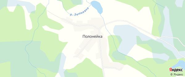 Карта деревни Полонейки в Псковской области с улицами и номерами домов