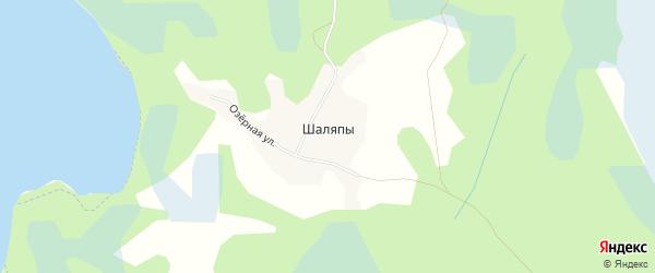 Карта деревни Шаляпы в Псковской области с улицами и номерами домов
